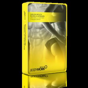 Bodywork360 das NEUE Trainingssystem – Review