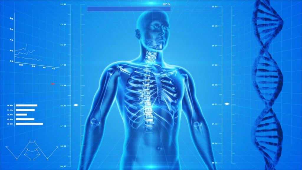 ZMA, Testosteron steigern, Ernährung Muskelaufbau, Sportnahrung